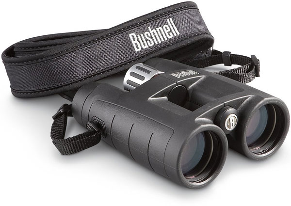 Best Binoculars for hunting elk - Bushnell Infinity