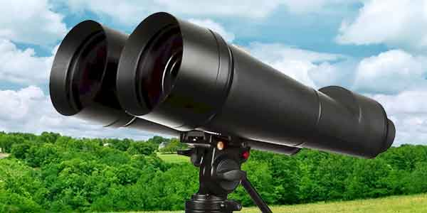 Best Binocular for the Money Review