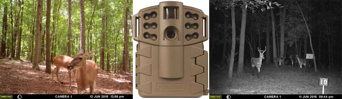 best game camera for the money - Moultrie Game Spy A-5 - Consumer Files