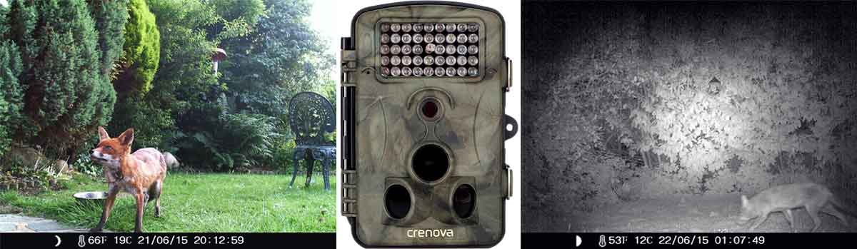 best game camera reviews - Crenova Game Camera - Consumer Files