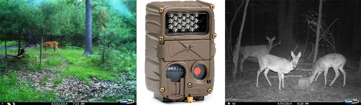 best game camera under 200 dollars - Cuddeback E2 Long Range IR Camera - Consumer Files