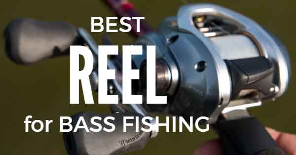 Best Reel for Bass Fishing Review - Consumer Files