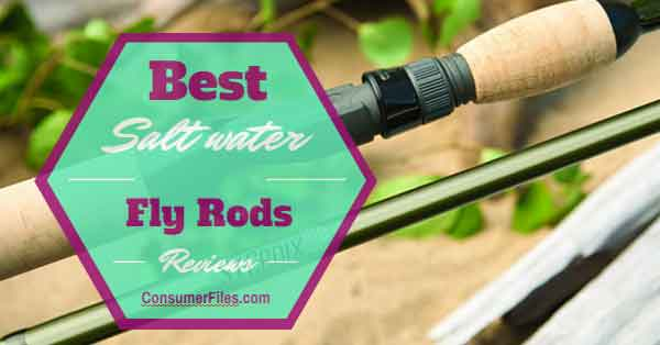 Best Saltwater Fly Rods Review - Consumer Files