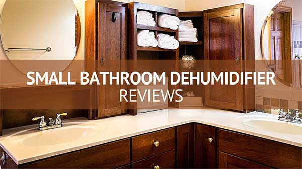 Small Dehumidifier for Bathroom Reviews - Consumer Files