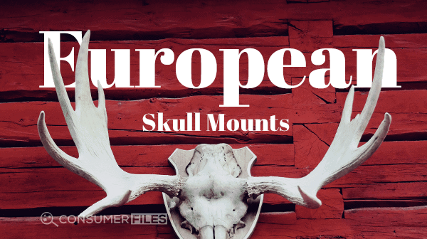 European_Skull_Mounts-Consumer-Files-2