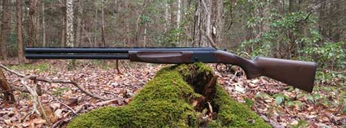 How to Hunt Rabbits Like a Pro 12 Gauge Shotgun - Consumer Files