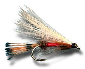3-Main-Types-of-Fishing-Flies-streamer-flies-Consumer-Files