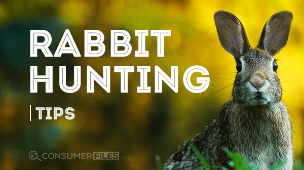 https://consumerfiles.com/wp-content/uploads/2017/10/Rabbit_Hunting_Tips-Consumer-Files.png