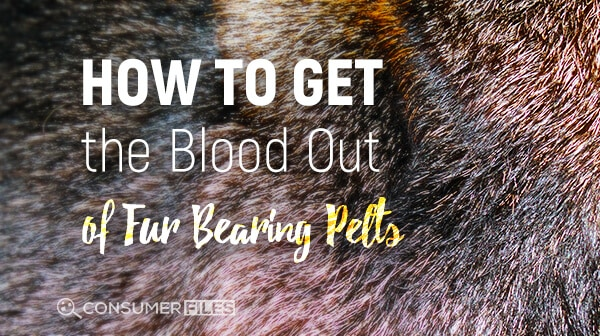 How to Get the Blood Out of Fur Bearing Pelts