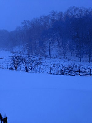 My Year of Eating Like the World Ended – Monthly Report First_Snow_02 - Consumer Files