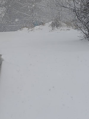 An Image of More Snowing