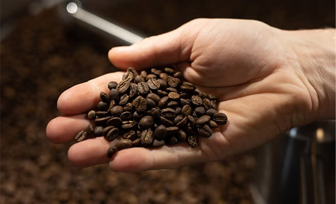 Arabica (coffee arabica) for our Different Types of Coffee Beans Review