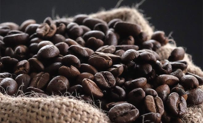 Liberica (Coffee liberica) for our Coffee Bean Varieties