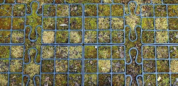 How to Grow Your Own Survival Garden grid