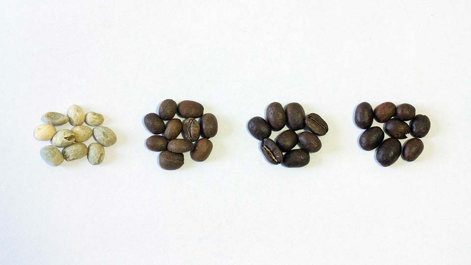 Raw, Light, Medium and Dark Roast Coffee Beans