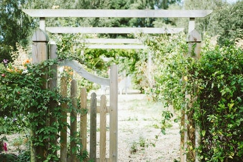 How to Grow Your Own Survival Garden Gate Gate View